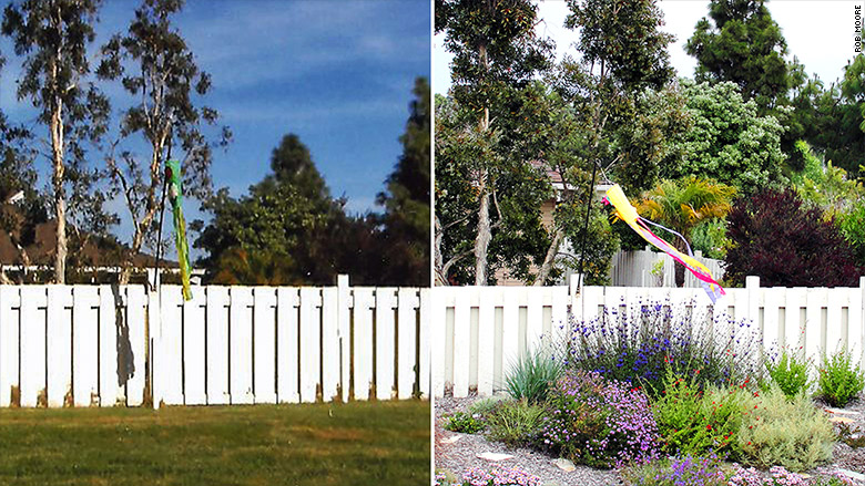 california landscaping before after