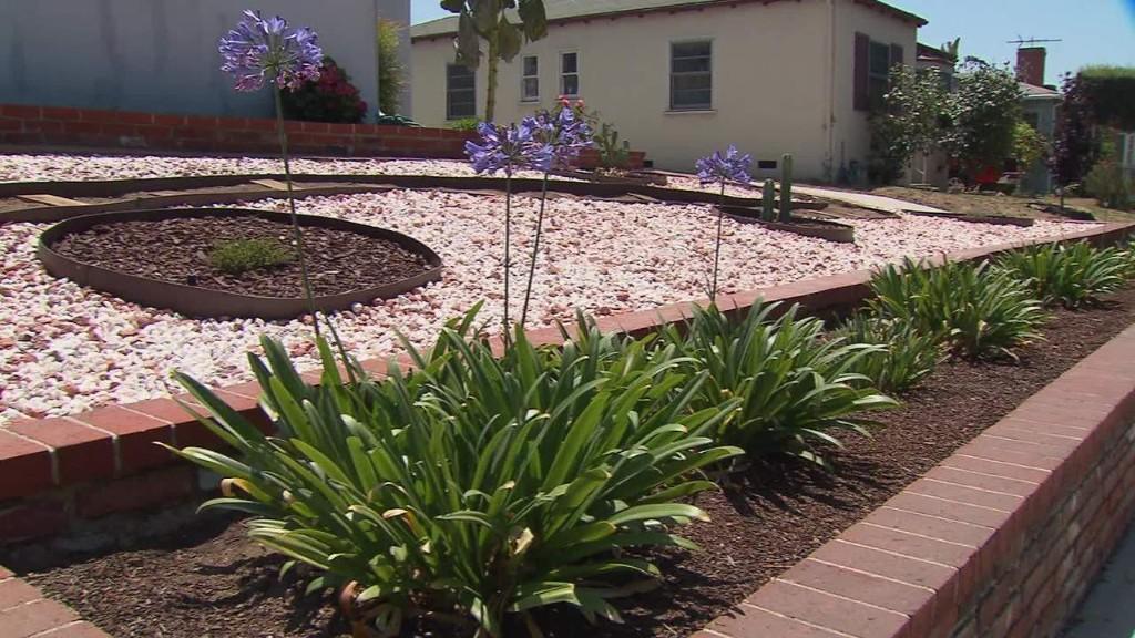 Californians plant drought-friendly landscapes