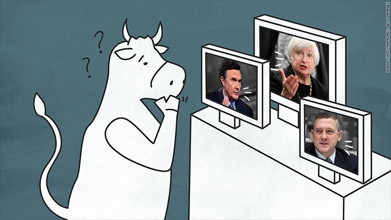 confused bull fed