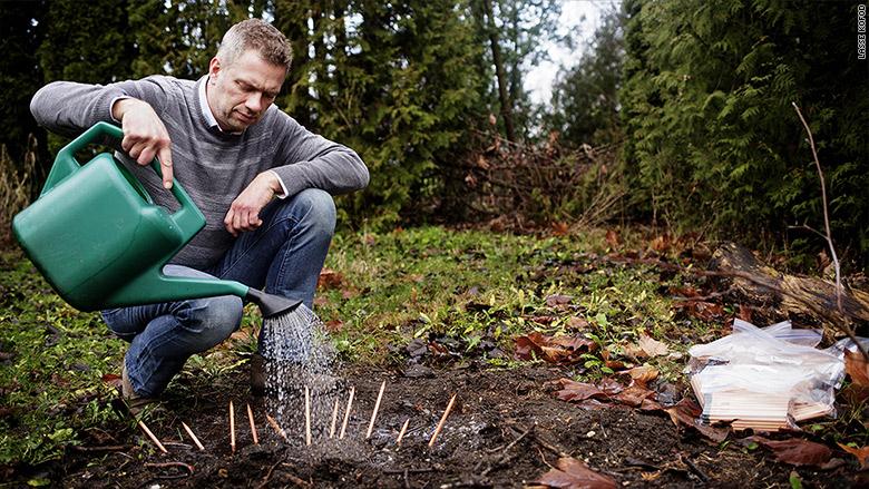 sprout world michael stausholm
