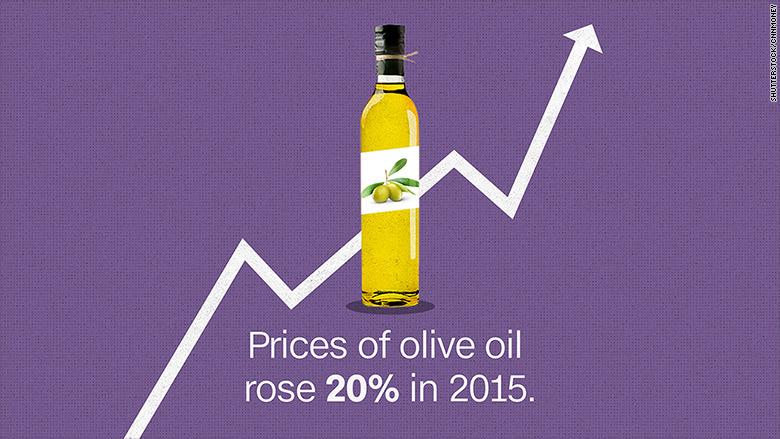 olive oil price