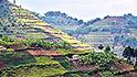 tourism spike uganda