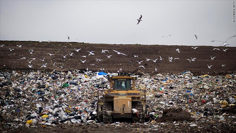 diapers landfill