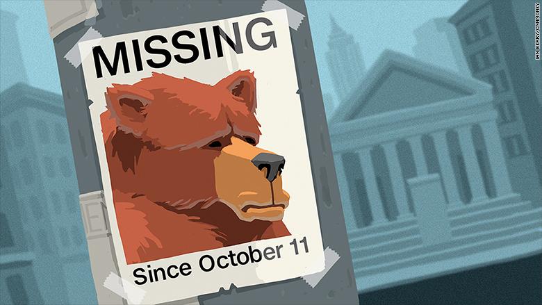 missing bear poster stock