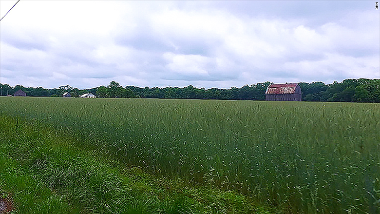 brandywine farm