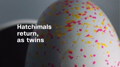 Hatchimals return, as twins