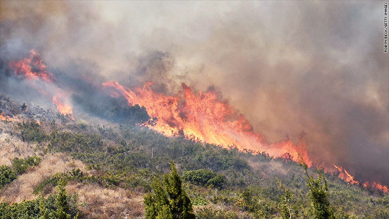 Marijuana Farms Are Burning In California Wildfires