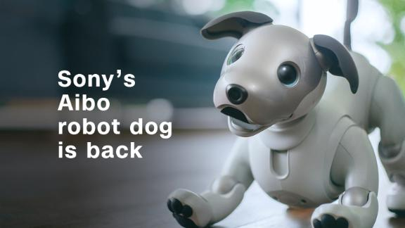 Sony unleashes the cuteness with new robot dog