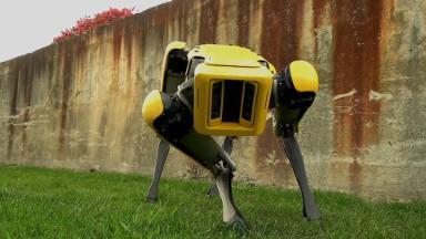 Your next pet could be a Boston Dynamics robot