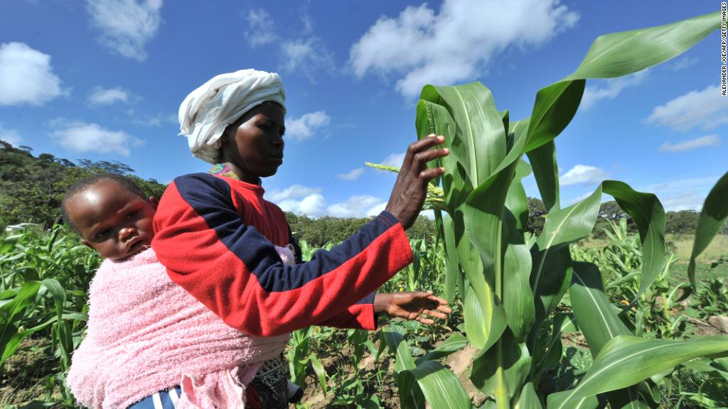 How Mugabe's land reform crippled the economy