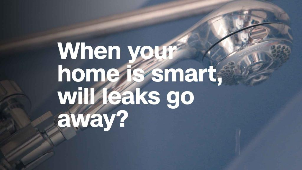 When your home is smart, will leaks go away?