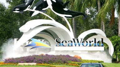 Attendance is up at SeaWorld. Is the worst over?