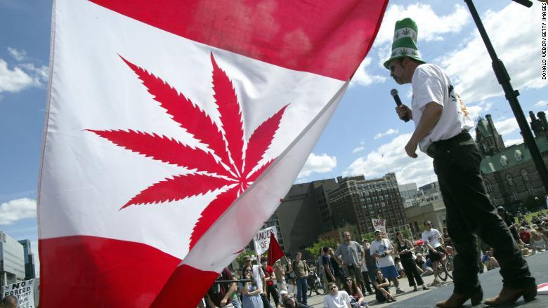 Soal Legalisasi Ganja yang Berlarut-larut – dejournal.id dejournal.id ... Belajar dari Kanada: Ganja Dilegalkan, Orang Tua Pusing Tujuh Keliling