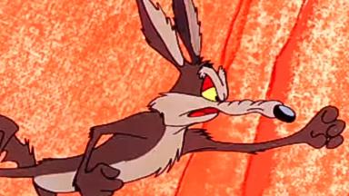 Ben Bernanke warns this is the Wile E. Coyote economy