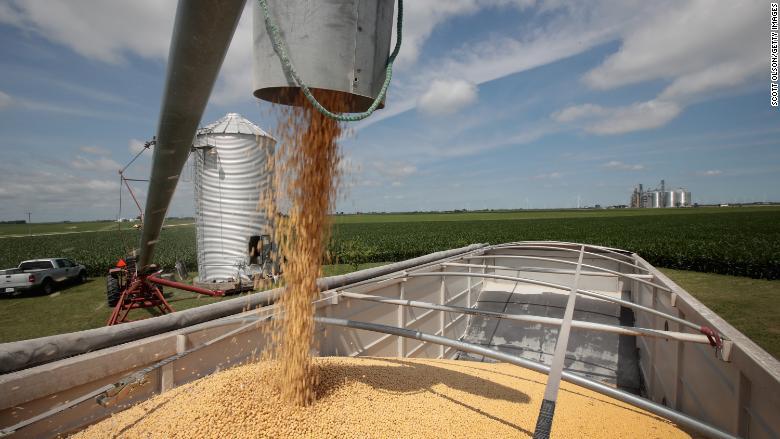 soybeans grain bin