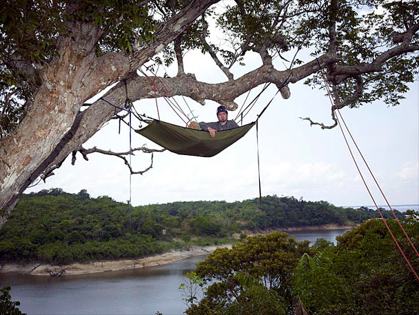with straps installed eco products tree black pack friendly canada hammock universe