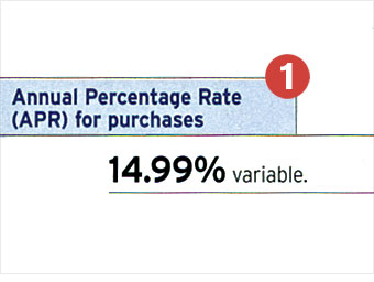 An APR of 11% or less on purchases