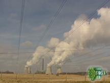 Green to go: Coal